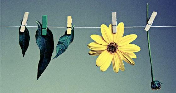 15608-125894-que-sabemos-de-la-moda-sostenible